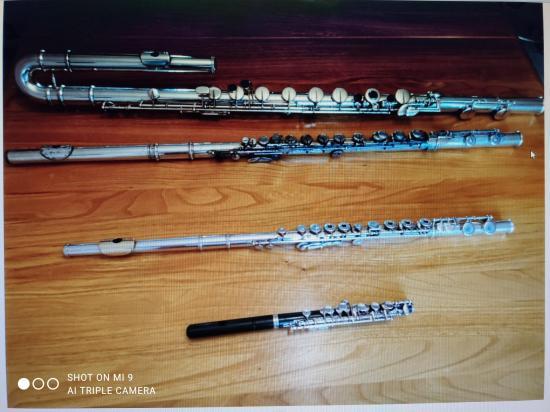Flûtes de François 2